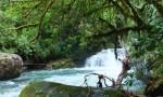 Fluss Costa Rica